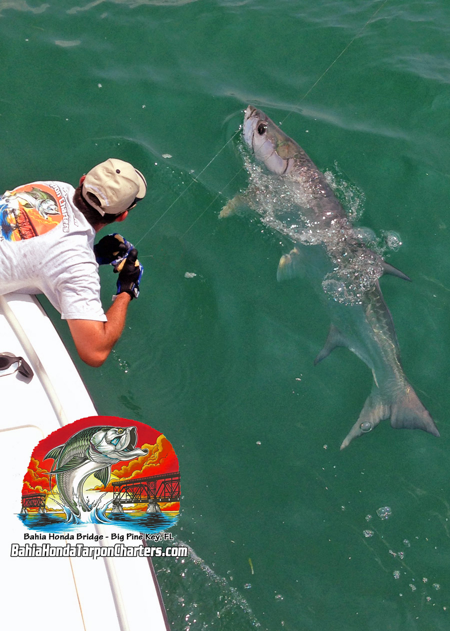 Johns Bahia Honda Tarpon with Capt Pete Rapps