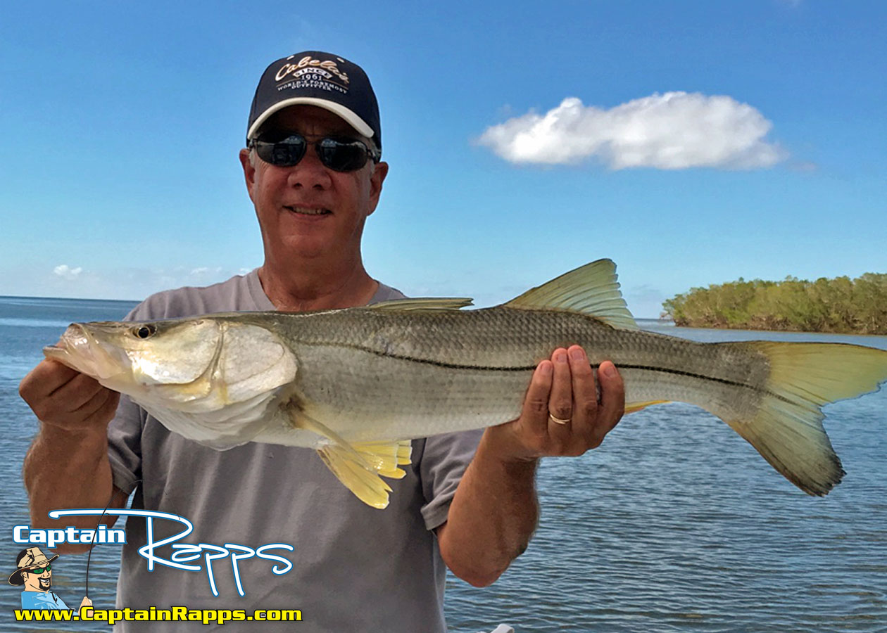 fishing charters and guides chokoloskee everglades city florida