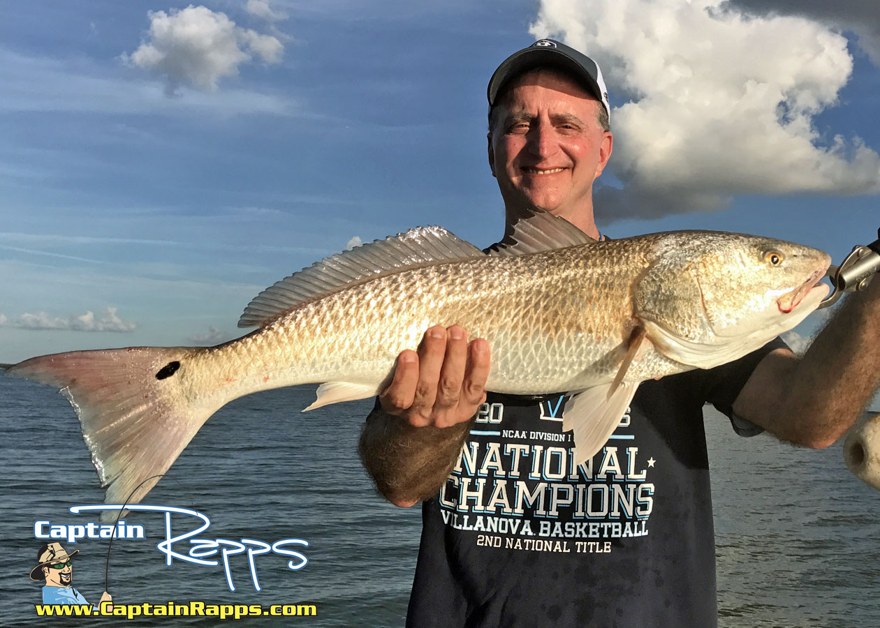 over slot redfish caught on a recent trip from chokoloskee and everglades city florida with capt rapps fishing charters and guide service