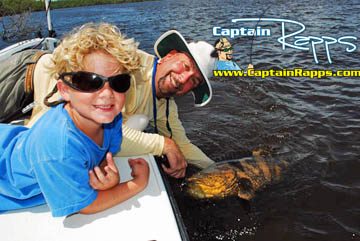 goliath grouper everglades fishing charter