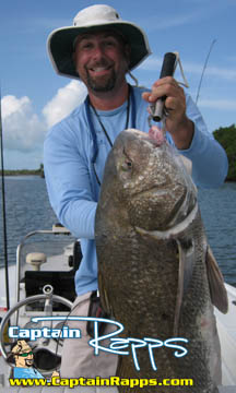 drum chokoloskee everglades city fishing charter