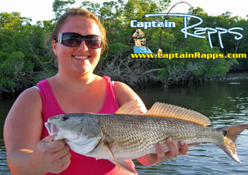 Everglades City and Chokoloskee fishing charters